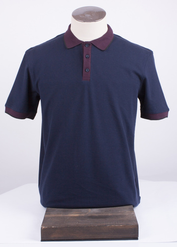 Мужская футболка-поло АРТ. 2-181-20-2109
