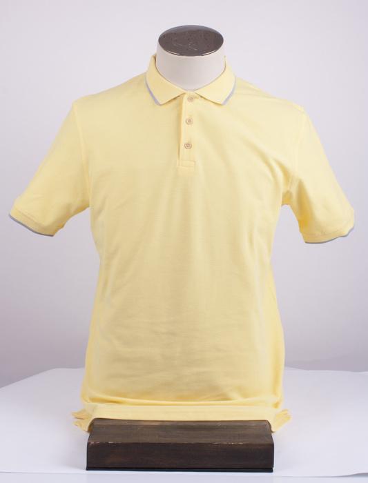 Мужская футболка-поло АРТ. 2-181-20-2102